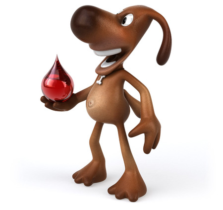 animal health: Fun dog Stock Photo