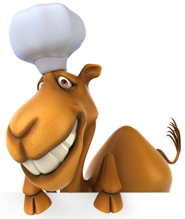 Camel with chef hat Stock Photo
