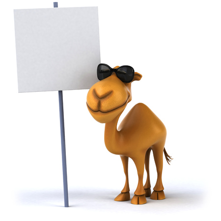 Camel with shades beside a signboard