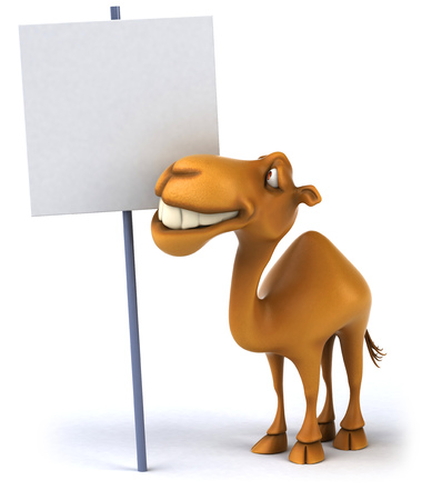 Camel with empty signboard