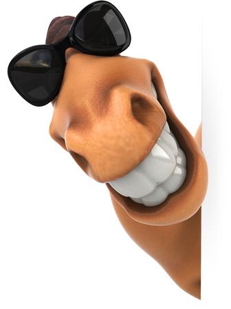 Horse wearing sunglasses Imagens