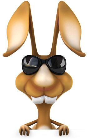 Rabbit wearing sunglasses