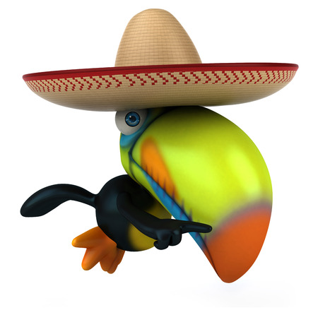 Toucan with a sombrero Stock Photo