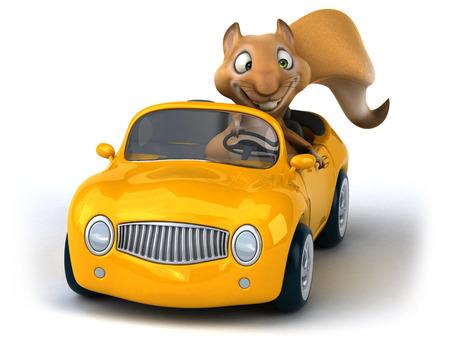 windscreen: Fun squirrel