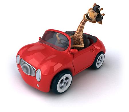 zoo traffic: Fun giraffe