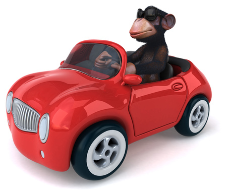 zoo traffic: Fun monkey