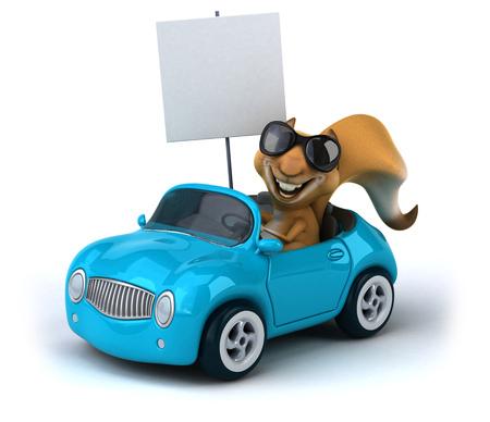 aerodynamic: Fun squirrel
