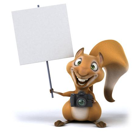zoom: Fun squirrel