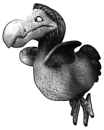 flightless: Dodo