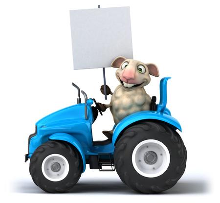 agronomy: Fun sheep Stock Photo