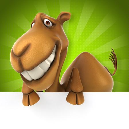 safari animal: Fun camel