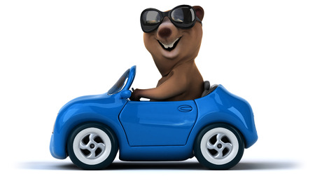 front wheel drive: Fun bear Stock Photo