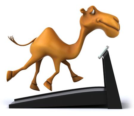running camel: Cartoon camel on treadmill