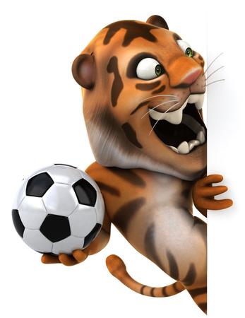 bengal: Tiger holding a football hiding behind wall