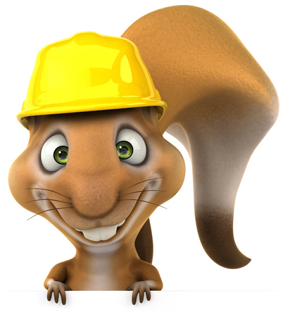 Squirrel wearing a hard hat