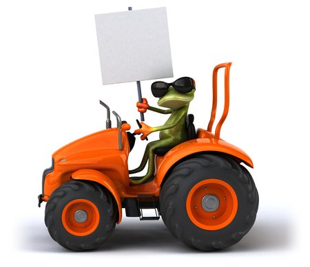 agronomy: Fun frog