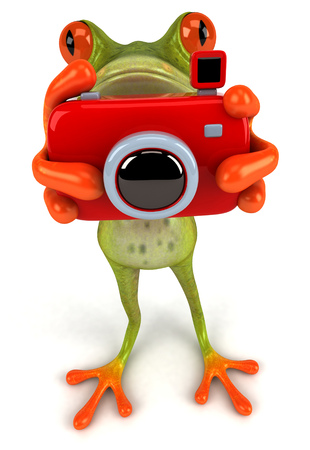 Cartoon frog with camera