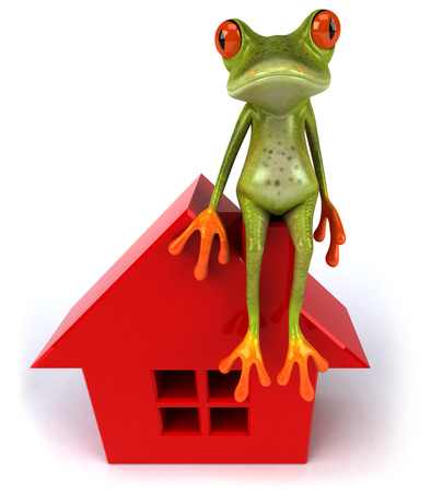 Cartoon frog with red house