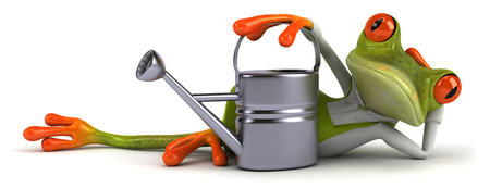Cartoon frog lying down with watering can Stock Photo