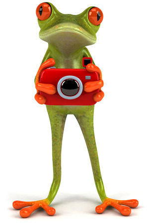 Cartoon frog with a camera