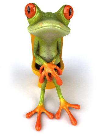 loo: Fun frog