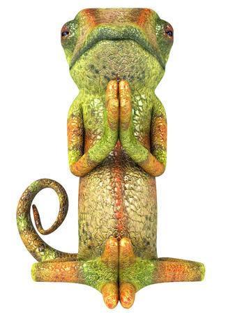 Chameleon character in meditation