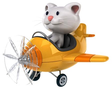 aerial animal: Fun cat