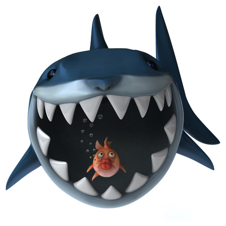 carnivorous fish: Fun shark