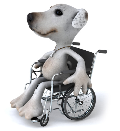 Cartoon dog on wheelchair