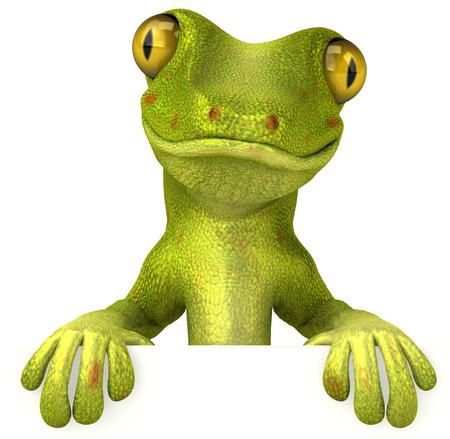 Gecko  Foto de archivo - 81470827