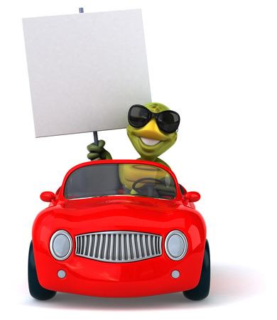 windscreen: Fun turtle