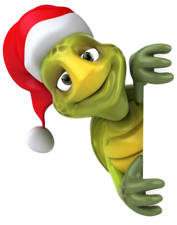 Tortoise character with santa hat