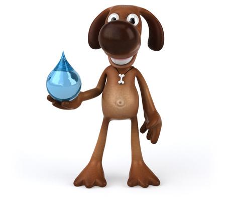 waterdrops: Fun dog Stock Photo