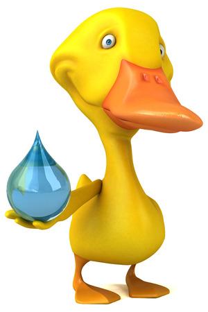 waterdrops: Duck Stock Photo