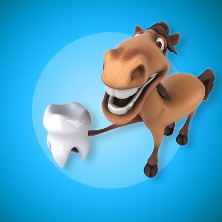 horse care: Fun horse