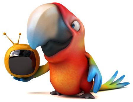 white perch: Fun parrot