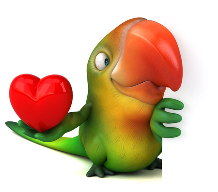 macaw: Fun parrot