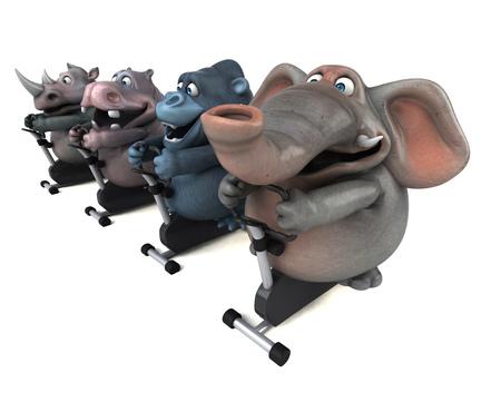 뚱 땡, 코뿔소, 코끼리와 고릴라 - 3D 그림 맞추기 스톡 콘텐츠