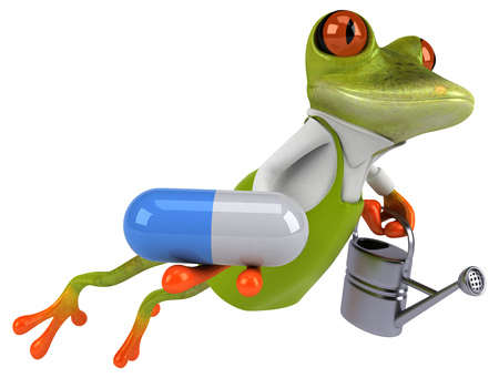 Fun frog gardener - 3D Illustration 写真素材