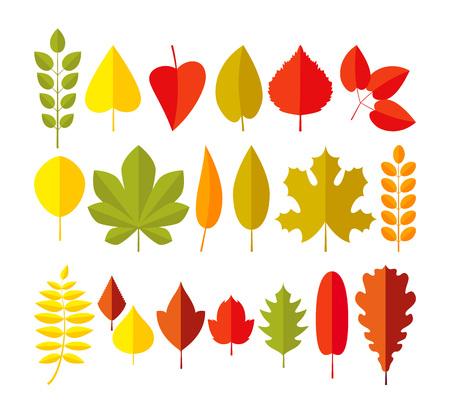 Ensemble de feuilles d'automne. Style plat de dessin animé simple feuille d'automne isolé sur fond blanc. Vecteurs