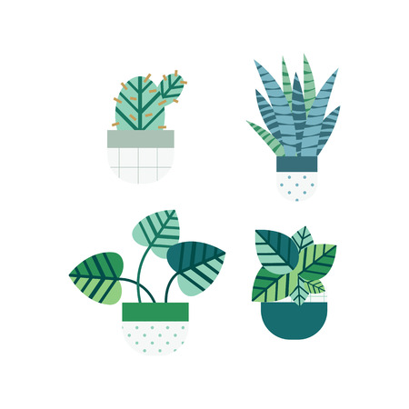 Cactus and succulent set with nice pots in flat style. Editable elements, icons for Home garden, Landscape design.Vector illustration