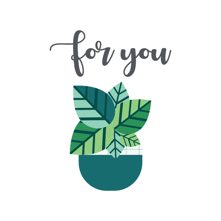 For You lettering cute card with funny Flower plant isolated on white background. Succulent thank you quote Stock Photo
