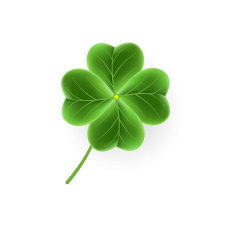 Realistic Clover leaf icon for St. Patricks Day holiday. Green Shamrock grass symbol. Lucky shiny flower for Irish beer festival or Scottish ornament.