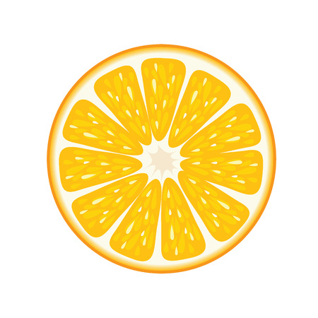 Orange fruit vector illustration.