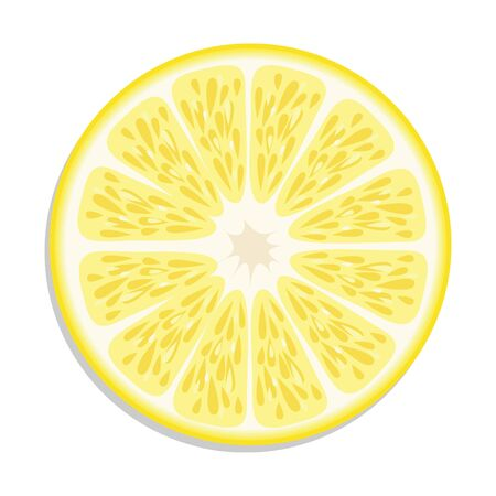 Orange slice vector illustration. Çizim