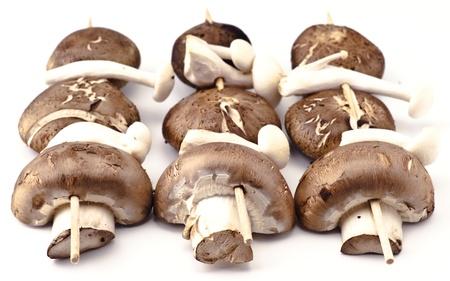 skewers before cooking mushrooms on white background