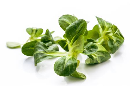 hojas: hojas de ensalada cruda aislados en blanco