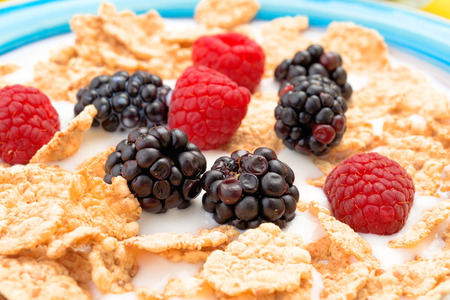 thinness: blackberries and raspberries in bowl of cereal with milk on a yellow background