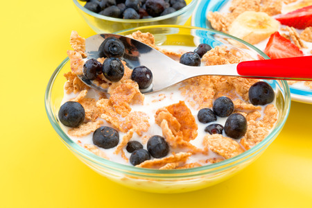 thinness: small bowl of cereal with blueberries, on yellow background