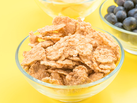 approximation: approximation of bowl of cereal with other berries, yellow background